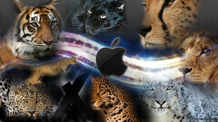 data_rumor_mac_os_x_cats_background_by_charmanderfan7_d39bjlc