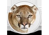 data_applenews_1370394183_mountain_lion_165